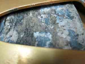 Mold Resulting from Water Damage